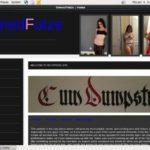 Owned Fotze Desktop