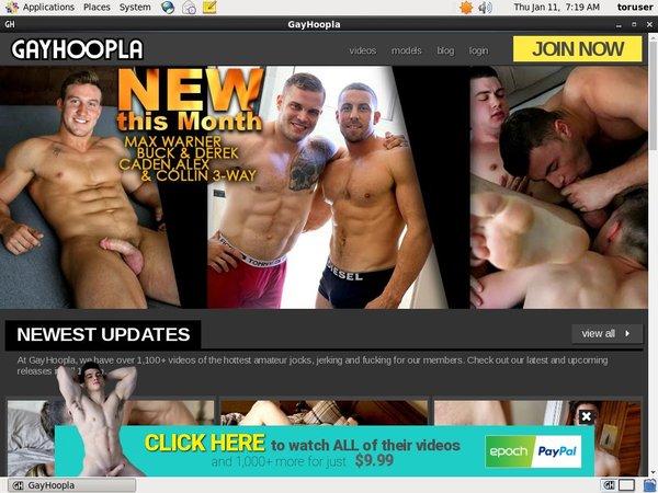 Com Gayhoopla Day Trial